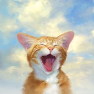 el-gato-feliz