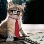 10 Ejercicios con el verbo to be