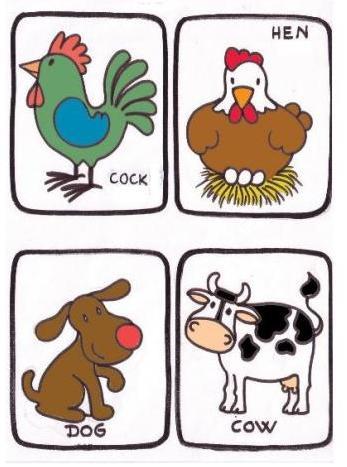 Cartina della gallura sc 95 additionally When Dogs Do Stupid Stuff in addition Acquaworld 2015 Sconti Promozioni E in addition P6951846 besides 41 Best Lion Tattoos On Hand. on dove dog