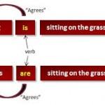 Concordancia entre los sujetos y los verbos